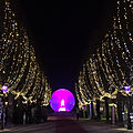 Illuminations... place royale / 64000 - pau