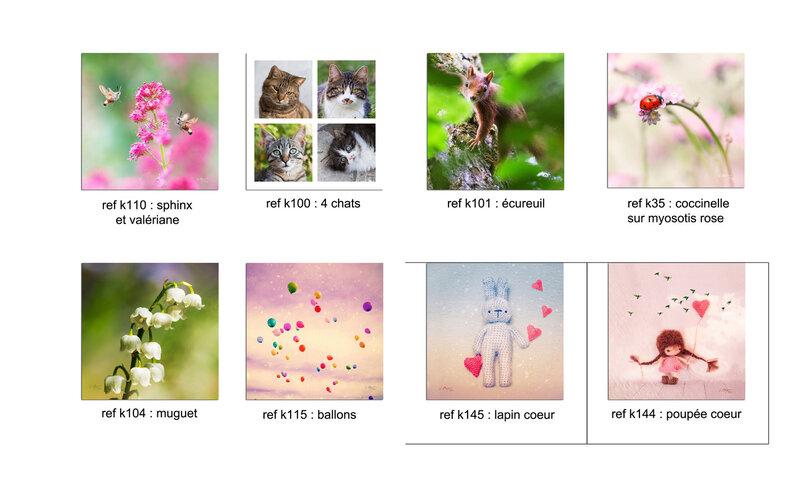 cartes fleurs carréesB