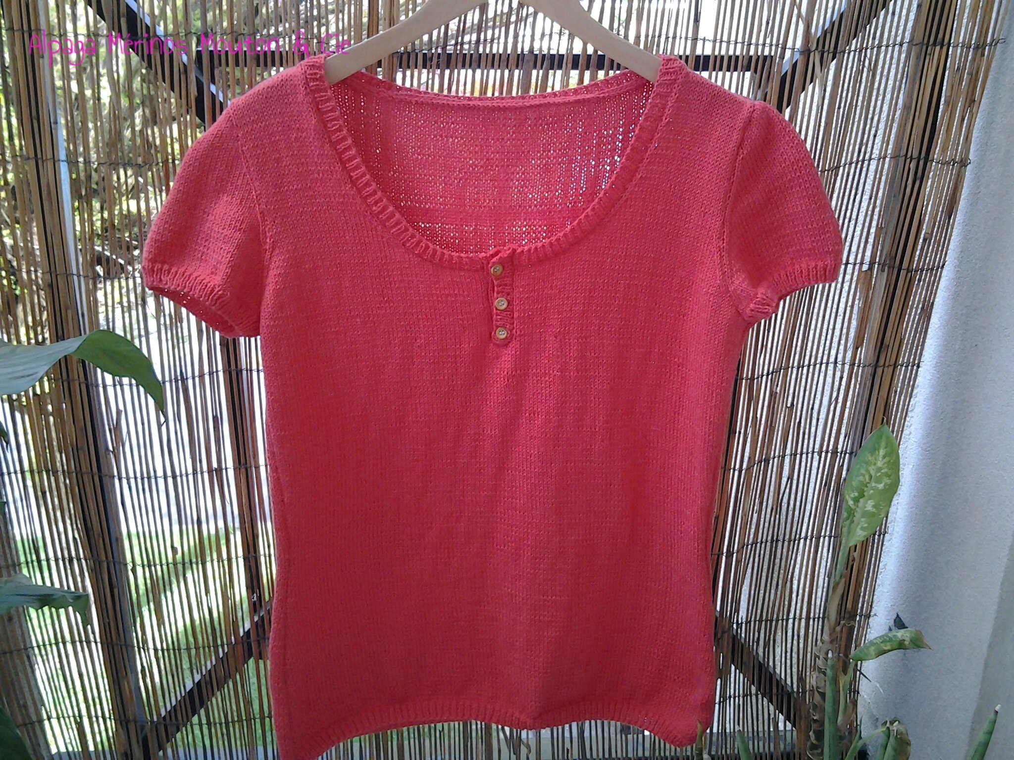 Pull / T shirt manches courtes