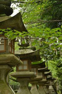 1 et 2 juillet Takamatsu Kotohira 180