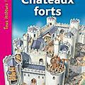 Cp- les chateaux forts