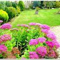 Notre jardin tout en couleur