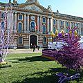 Toulouse, Fête de la Violette