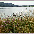 Lac du Rustaing 1006158