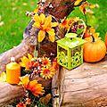 👨🌾 novembre au jardin paysagiste pays basque.