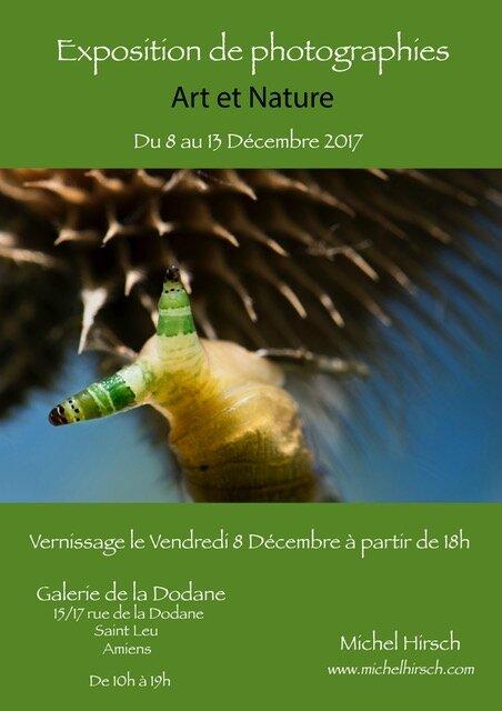 Dodane Vert Décembre 2017(1)