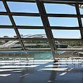 Antartica...exposition au musée des confluences...