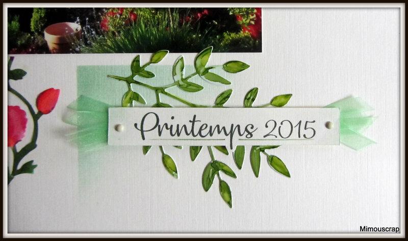 Jardin 2015 002