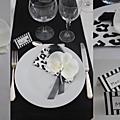 TABLE N°9 - decor serviette