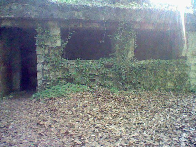 Fort Souville juin 2011