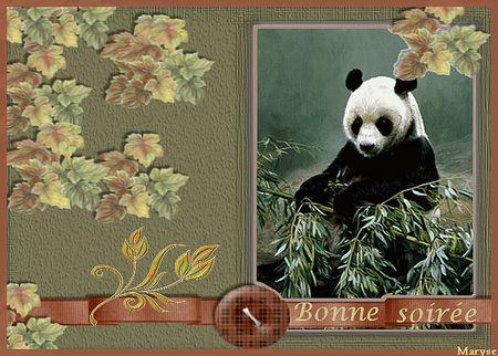 bonne_soiree_Panda