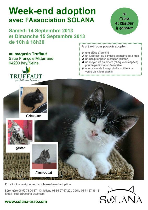 weekend adoption truffaut septembre 2013