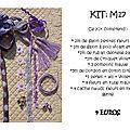 VENDU Kit M17