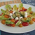 Salade de chou blanc aux tomates, mozzarella à l'avocat et vinaigrette mayonnaise