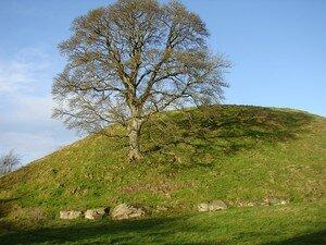 Newgrange_Dowth__96_