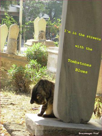 Tombstones_Cat_Blues