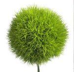 1 fleur verte
