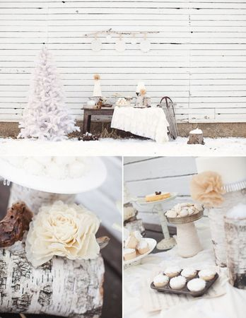 winter_wedding_outdoor_09_e1294784570789