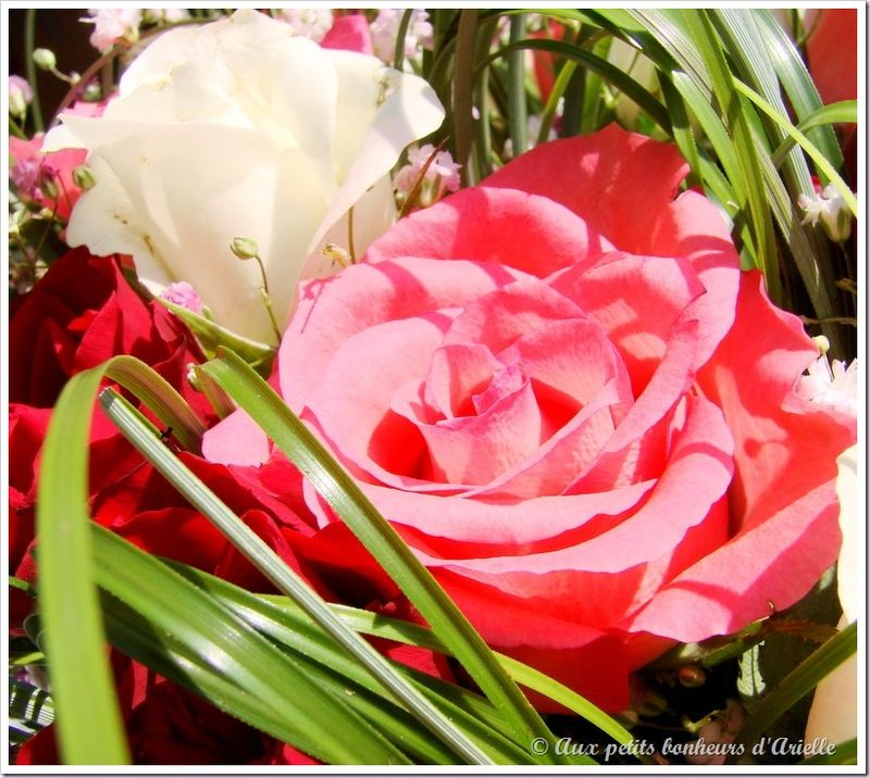 Bouquet de fête des mères (3)