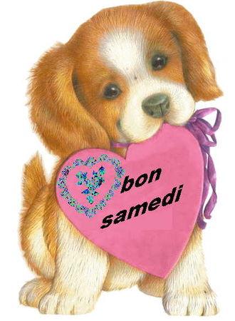 bon_samedi_joliecarte2