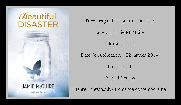 Jamie McGuire - Beautiful disaster