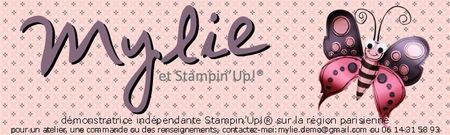 projet_banni_re_papillon_essai_1_cecile_copie