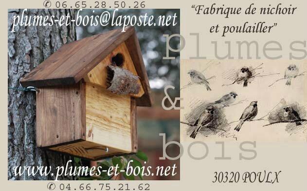 carte de visite plumes & bois 1 copy