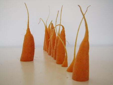 appelsthematiques