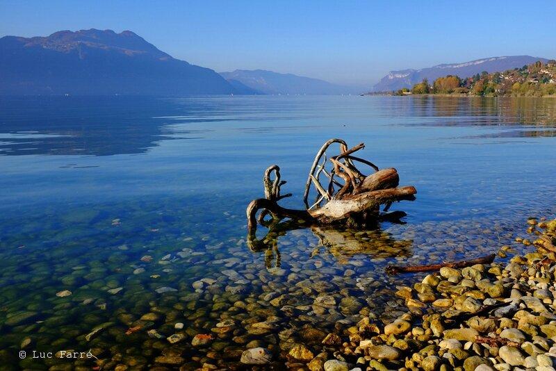 souche le lac 01
