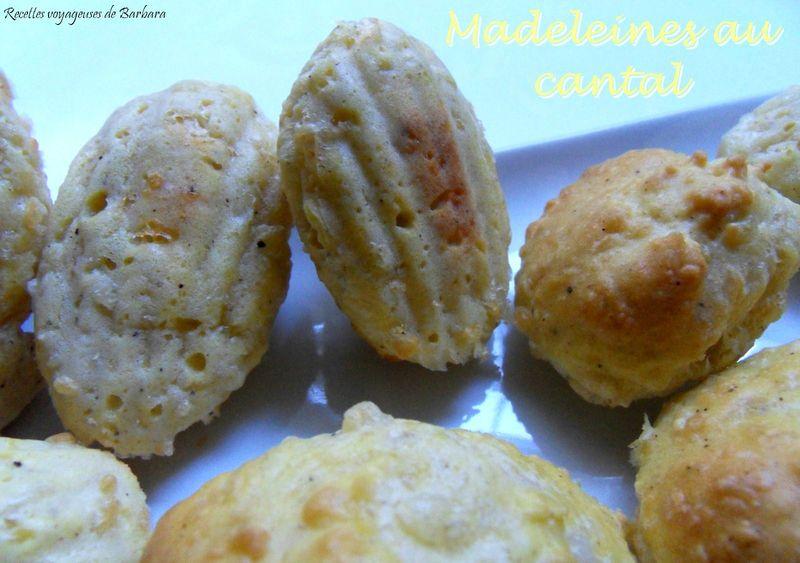 madeleines au cantal2