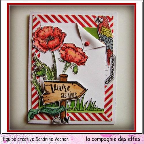 Carte coquelicots VIVRE SES REVES dt LCDE (1)