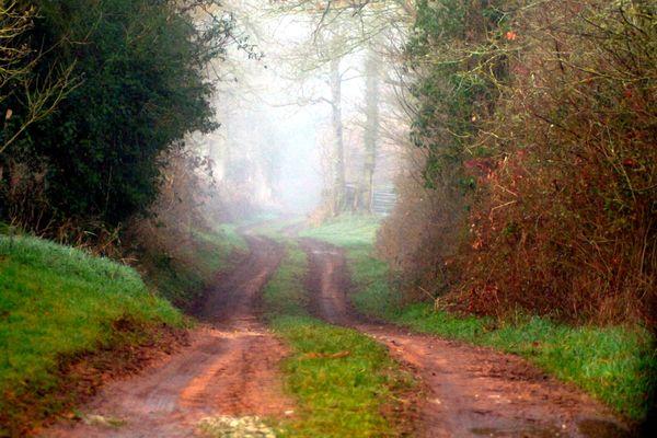 chemin argile et brume hiver (1)