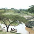 108 - Sur la route entre Addis Abeba et Awassa