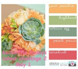 colour-inspiration-2-May-1-copy-250x222