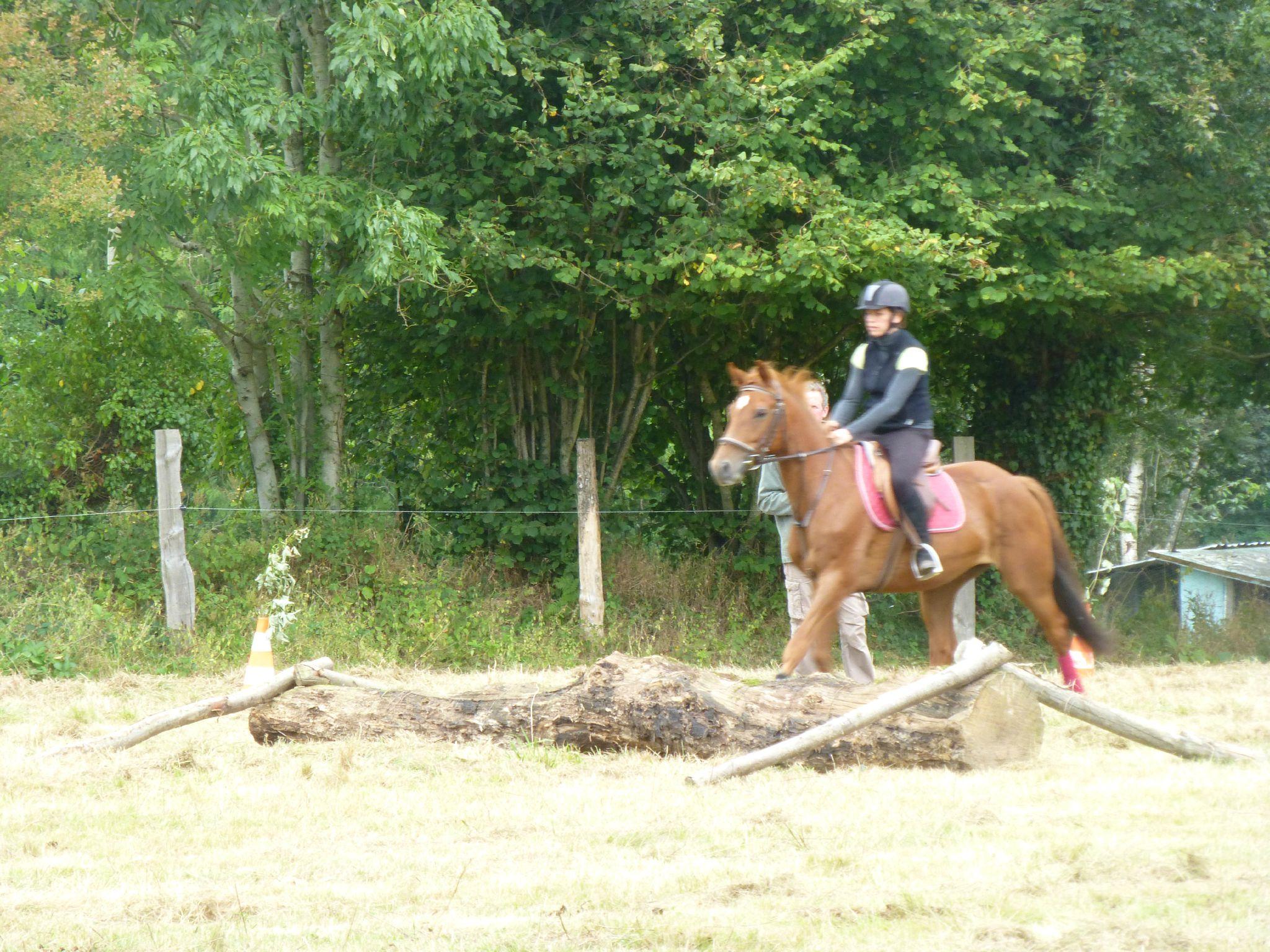 Jeux équestres manchots - parcours de pleine nature après-midi (141)
