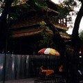 Temple des Lamas - Pékin - Août 2000