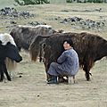 MONGOLIE 2013