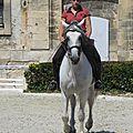 Le musée du cheval à chantilly (oise) le 7 août 2015 (3)