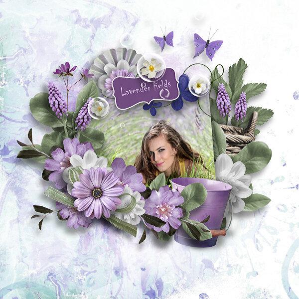 GBE_Lavenderfields_BD