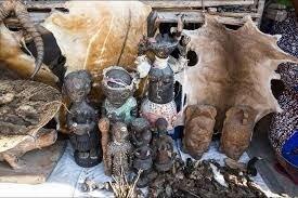 """Résultat de recherche d'images pour """"grand maitre spirituel marabout aziza du benin"""""""