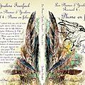 Les plumes d'ysaline recueil 4 : plume en folie (ysaline fearfaol)