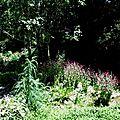 1-Jardin de Clogs et Lac Magnoac 070617