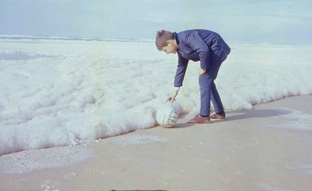 6 - Mousse- premiers rejets 1971