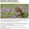 Exposition histoire de plumes par evelyne lahillade