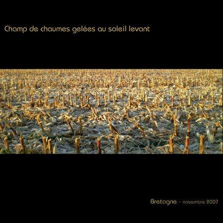 Chaumes_gel_es