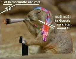 images90