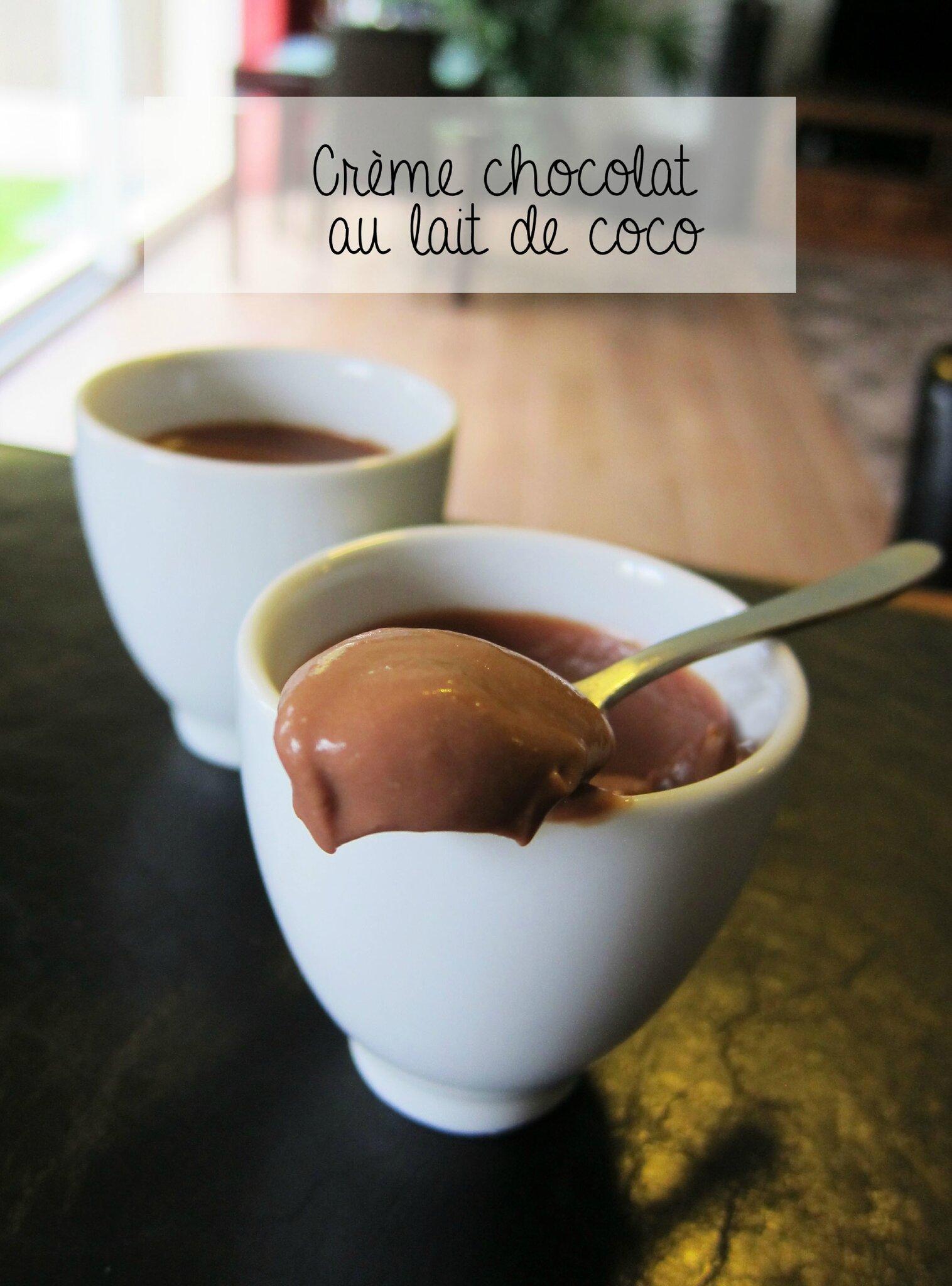Petite Creme Au Chocolat Et Lait De Coco A Vos Papilles