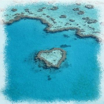 474058-coeur-de-corail