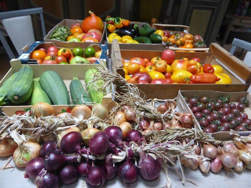 9-légumes export (2)