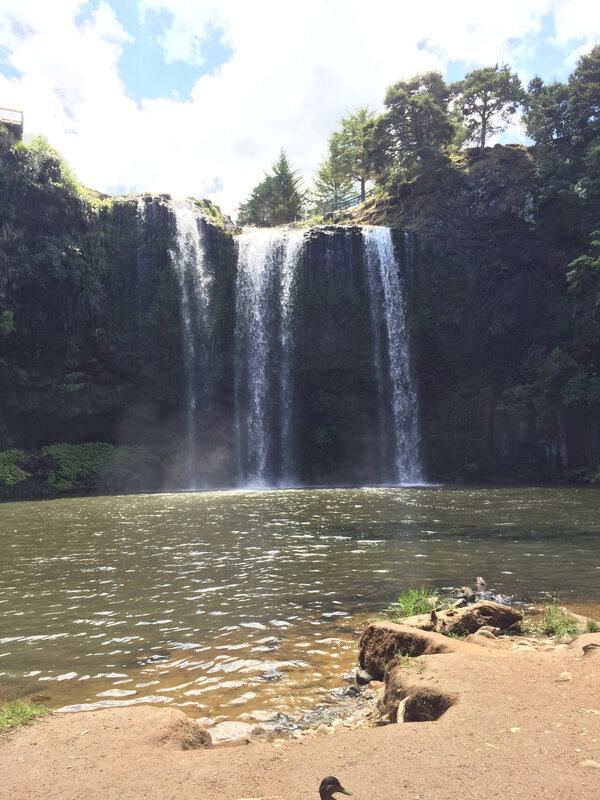 Whangarei_falls_PDV3